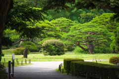 Tóquio, Japão - 22 de julho de 2017 fotografia de stock royalty free
