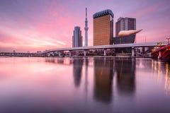 Tóquio, Japão no alvorecer Fotografia de Stock
