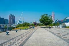 TÓQUIO, JAPÃO O 28 DE JUNHO - 2017: Os povos não identificados que andam, com ferris rodam dentro o horizont, esta grande atração Foto de Stock
