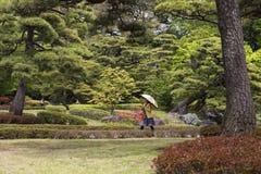 Tóquio, Japão, parque imperial do palácio Imagem de Stock Royalty Free