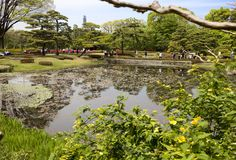 Tóquio, Japão, parque imperial do palácio Lagoa da carpa Foto de Stock