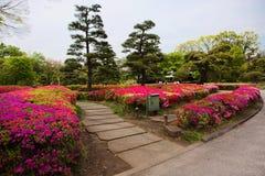 Tóquio O parque do palácio imperial Fotografia de Stock Royalty Free