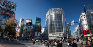 Tóquio Shibuya Foto de Stock Royalty Free
