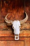 Tótem el cráneo del toro Imagen de archivo