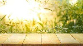 Töm av den wood tabellöverkanten på suddighet av nytt gräsplanabstrakt begrepp från trädgård Arkivfoto