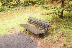 Töm bänken i Forest Park fotografering för bildbyråer
