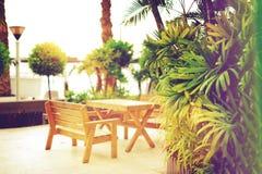 Töm bänken på strandgångbanan Soligt vila område Tropisk grön palmträdbakgrund Ljus effekt för sol och solig bokeh Arkivbilder