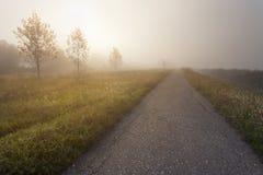 Töm den öppna vägen på den dimmiga morgonen Fotografering för Bildbyråer