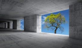 Töm den konkreta inre med blå himmel och göra grön trädet Arkivbild