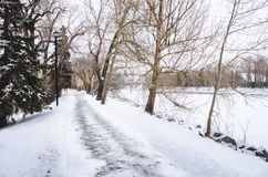 Töm den snö täckte flodstrandbanan som fodras med avlövade träd Fotografering för Bildbyråer