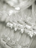 töm exponeringsglaswine Royaltyfri Foto