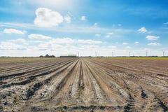 Töm fältet som är förberett för att plantera Royaltyfri Fotografi
