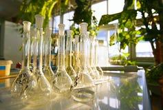 Töm mätningscylindern/buretten med graderade markeringar flaskor arkivbild