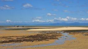 Töm nästan stranden i Marahau, Nya Zeeland Arkivbilder