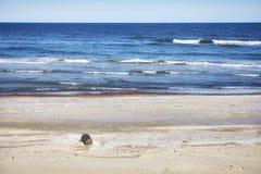 Töm stranden med den kasserade soptunnan Arkivfoton