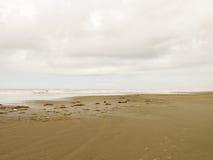 Töm stranden med molnig himmel i Brasilien royaltyfri foto
