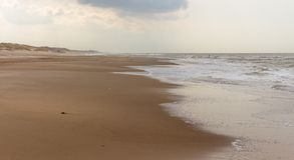 Töm stranden och havet nära aan zee för schoorl i Nederländerna arkivbild