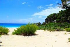 Töm stranden på havet Arkivfoto