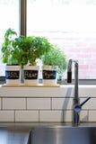 Töpfe Kräuter auf zeitgenössischer Küchenfensterbrettvertikale Lizenzfreie Stockfotografie