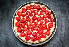 Törtchen mit Erdbeeren Stockbild