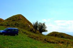 Túmulos celtas no platô de Transylvanian, Romênia Paisagem verde nos plenos verões em um dia ensolarado Imagens de Stock