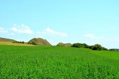 Túmulos celtas no platô de Transylvanian, Romênia Paisagem verde nos plenos verões em um dia ensolarado Fotos de Stock