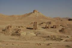 Túmulos do Palmyra Fotografia de Stock