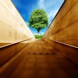 Túneis e árvores fotografia de stock