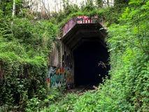 Túnel abandonado do trem com grafittis Imagens de Stock Royalty Free