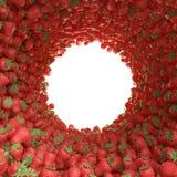 Túnel circular de fresas Foto de archivo libre de regalías
