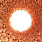 Túnel circular de manzanas rojas Imagen de archivo libre de regalías