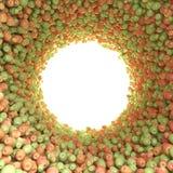 Túnel circular de manzanas verdes y rojas Fotografía de archivo