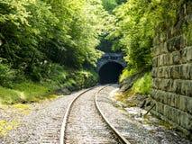 Túnel coberto de vegetação do trem Imagens de Stock Royalty Free