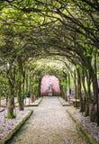 Túnel da árvore com passagem e estátua Foto de Stock