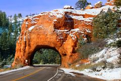 Túnel da rocha da floresta nacional de Dixie imagens de stock