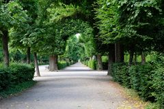 Túnel de árboles en un jardín austríaco imagen de archivo libre de regalías