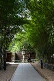Túnel de bambu imagem de stock