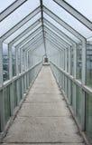 Túnel de cristal Foto de archivo