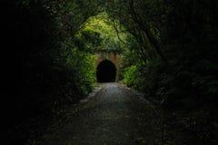 Túnel de estrada de ferro velho em Nova Zelândia imagens de stock