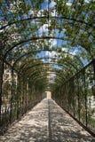 Túnel de la flor Fotografía de archivo libre de regalías
