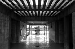 Túnel de la luz Imagen de archivo libre de regalías