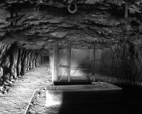 Túnel de la mina Imagen de archivo
