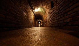 Túnel de la mina Fotos de archivo libres de regalías