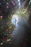 Túnel de la orquídea Foto de archivo libre de regalías