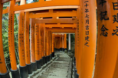 Túnel de las puertas de Torii Imagen de archivo