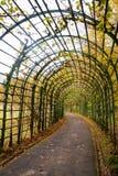 Túnel de plantas fotos de archivo