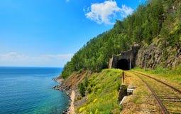 Túnel del ferrocarril y del bosque sobre él Imágenes de archivo libres de regalías
