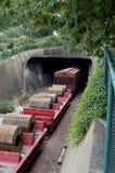 Túnel del tren Fotografía de archivo libre de regalías