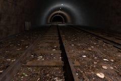 Túnel del tren Imágenes de archivo libres de regalías