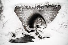 Túnel do conto de fadas imagem de stock